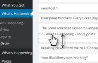 Post Types Order Plugin zum sortieren von WordPress Beiträgen